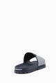 thumbnail of Navy & White Logo Slides #2