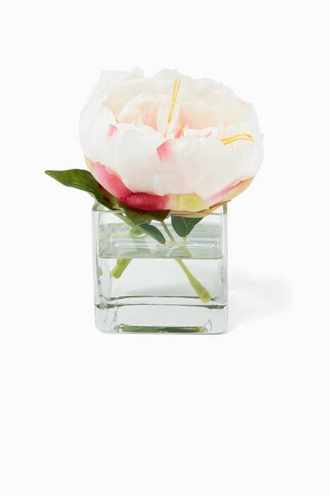 Cream and Pink Peony Rose Bouquet in Glass Cube Vase