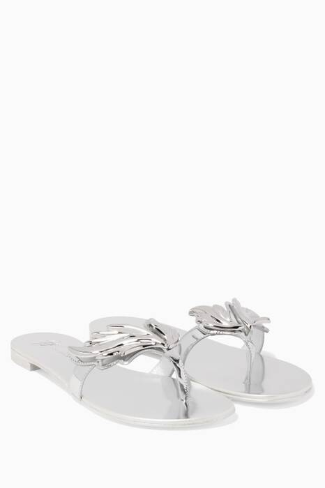 Silver Wings Cruel Slides
