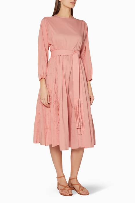 Blush Devi Midi Dress